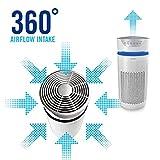 Zoom IMG-2 homedics filtro hepa di ricambio