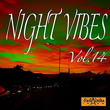 Night Vibes, Vol. 14
