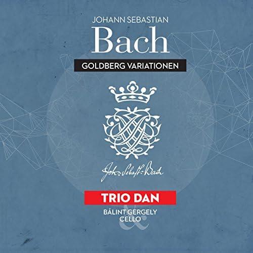 Trio Dan & Bálint Gergely
