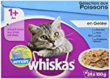 Whiskas - Alimento humedo para gatos, en gelatina (At?n, Colin, Pescado Blanco, Salm?n), 24 sobres paquete de 2 (48 sobres)