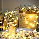 LEDストリングライト ledボールライト EFFE イルミネーションライト 3m 電球数20 電池式 インテリア飾り 装飾ライト 点滅機能 ワイヤーライト クリスマスツリー ライト パーティー 結婚式 誕生日 庭 飾りライト スター 電飾 室内室外 防水 電球色(ウォームホワイト)
