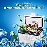 WY-Mini-Kühlschrank Frigorifero per Auto, 19 Litri, 12 V/24 V/220 V, per Prese di Alimentazione per Camion, a Doppio Raffreddamento, Portatile, a Doppio Uso