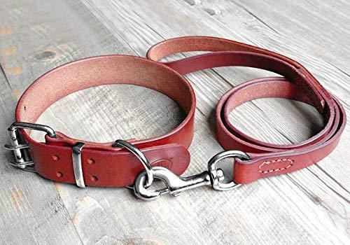 WEIZI Juego de collar de piel para perro de alta resistencia, ajustable, para perros pequeños, medianos y grandes, S a 2XL, marrón (color: marrón, tamaño: XXL)