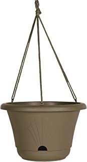 Bloem 010243 Lucca Self Watering Hanging Basket, 13