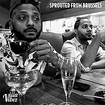 Sprouted from Brussels