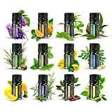 Ätherische Öle Set ANJOU Aromatherapie Duftöl ätherisches Öl 12 x 5ml für Aroma diffuser 100% Pur Geschenkset Aromatherapie-Öl-Kit Lavendel, Orange,Zitrone,Ylang Ylang und mehr -