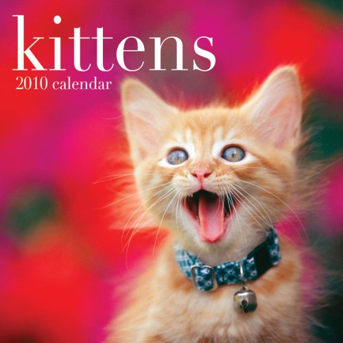 Kittens 2010 Wall Calendar (Kittens 2010 Wall Calendar)