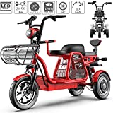 FYHJND Electric Bikes Mobility Scooters 3-Wheel Mobility Scooter with Detachable Lithium Ion 48V Battery and LED Light Child Seat 12'' City Commute Bike for Home Shopping Use,Red,1440Wh30ah