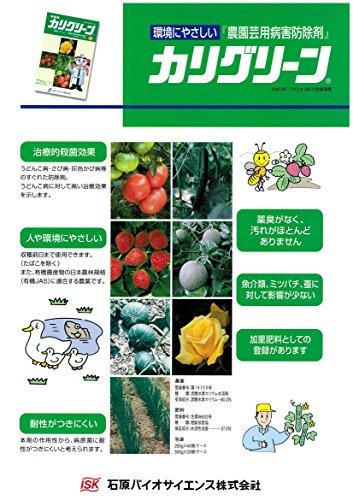 OATアグリオ 殺菌剤 カリグリーン 250g