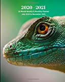 2020 -2021 18 Month Weekly and Monthly Planner July 2020 to December 2021: Lizard  - Monthly Calendar with U.S./UK/ Canadian/Christian/Jewish/Muslim ... Reptiles & Amphibian Animal Nature Wildlife