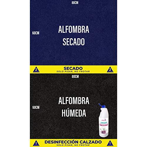 OBLITE Alfombra desinfectante + Limpiador Higienizante (x2), Felpudo Desinfectante para Entrada (80...