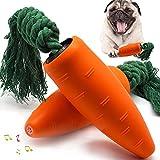 perros zanahoria
