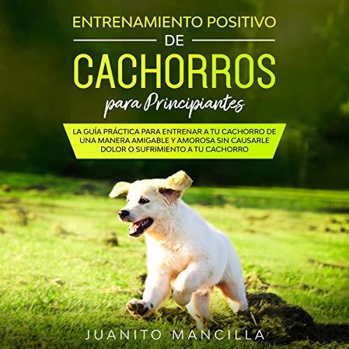 Entrenamiento Positivo De Cachorros Para Principiantes [Positive Puppy Training for Beginners] Audiobook By Juanito Mancilla cover art