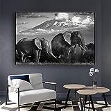 N / A Blanco y Negro Elefante Salvaje Paisaje Lienzo Pintura Carteles e Impresiones escandinavo salón Mural sin Marco A98 60x80cm