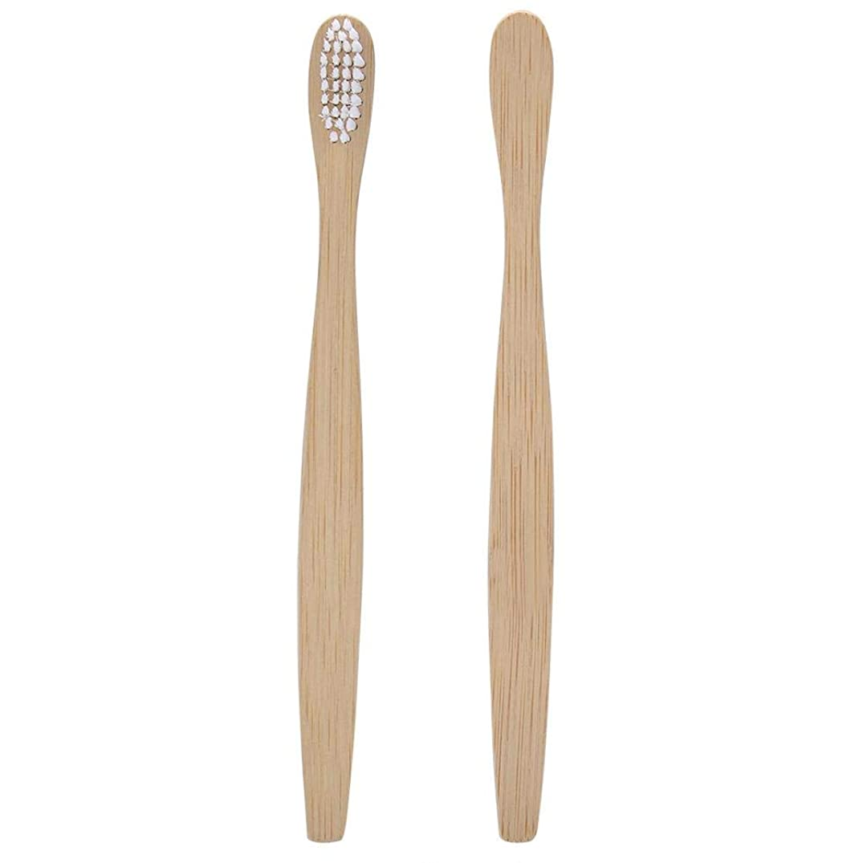 実行可能不適当テクスチャー竹の歯ブラシソフト環境にやさしいナイロン剛毛オーラルケア健康6色歯ブラシ(#2)