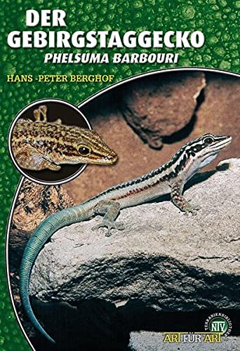 Der Gebirgstaggecko: Phelsuma barbouri (Art für Art: Terraristik)