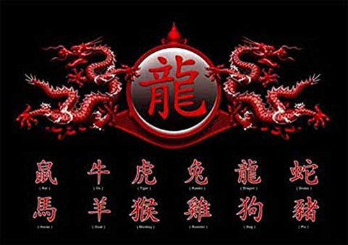 empireposter – Chinese schrijf- Zodiac, Dragon – afmetingen (cm), ca. 91,5x61 - Poster, NIEUW -