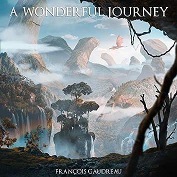 A Wonderful Journey
