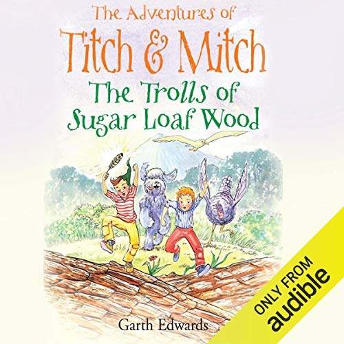 Page de couverture de The Trolls of Sugar Loaf Wood