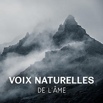 Voix naturelles de l'âme – Meilleur musique de relaxation, Son d'oiseaux, Océan et forêt pour de-stress