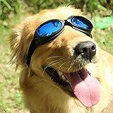 Mihachi Pet UV Protective Windproof Goggles Anti-Fog Dog Sunglasses for Pet, Head Girth 14'-20', Blue Lenses