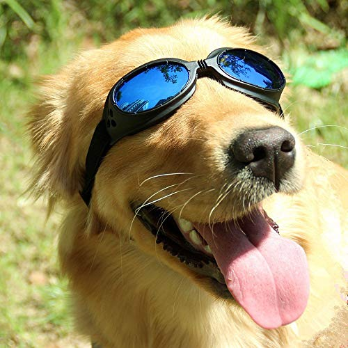 Mihachi Pet UV Protective Windproof Goggles Anti-Fog Dog Sunglasses for Pet, Head Girth 14'-20',...