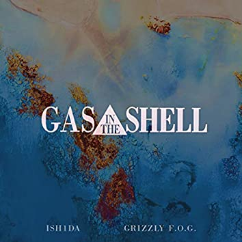 Gas in the Shell