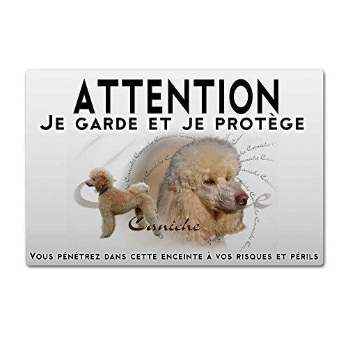 Pets-easy Beware Perro Caniche Apricot