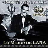 Songtexte von Vicente Fernández - Lo mejor de Lara