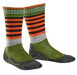 FALKE Frog Kinder Socken fir green (7656) 19-22 mit weicher Plüschsohle