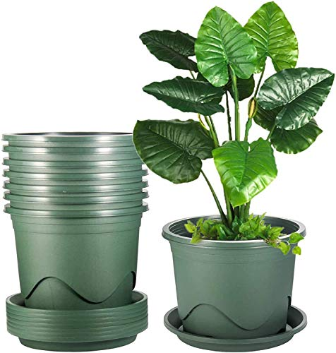 KAHEIGN 6 Piezas Plastico Macetas, 22cm Espesar Maceta Control De Raíces Sembradora De Plántulas De Vivero Jardín Decorativo Contenedor De Plantas Para Plantas Bonsái Interior Aire Libre (Verde)