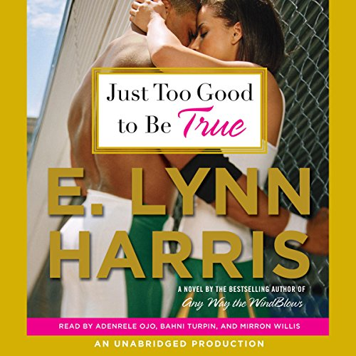 Just Too Good to Be True audiobook cover art