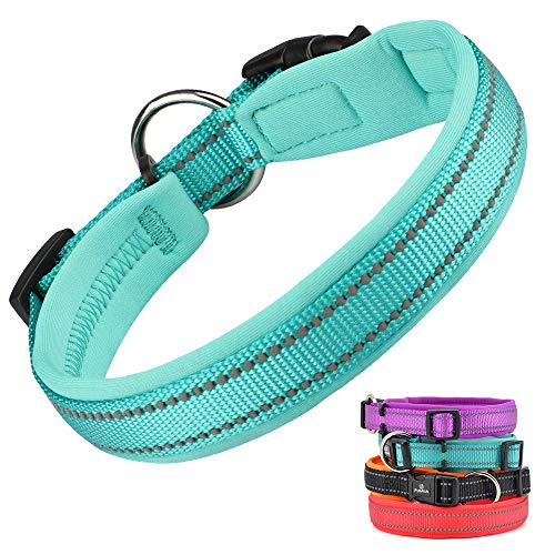 Collar for Dogs With Sensitive Skin