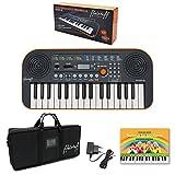ffalstaff tastiera elettronica 32 tasti per uso scolastico con borsa ffalstaff semirigida con imbottitura 5 mm, alimentatore e nuovo metodo rapidosuona la tastiera