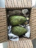 Fresh Guanabana (Soursop, Graviola) 1-2 Lb Fruit