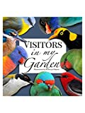 Visitors in my garden (English Edition)