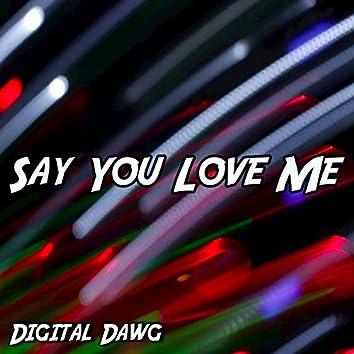 Say You Love Me - Single