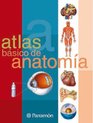 Atlas básico de Anatomía (Atlas básicos) (Spanish Edition)