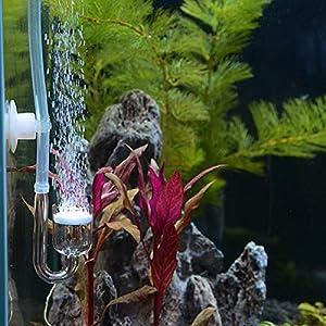 UEETEK Juego de 4pcs Aquarium Fish Tank CO2 Difusor Reactor de Dióxido de Carbono con Válvula de retención / U-Shape Tubo de vidrio / Sucker