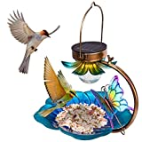 Birdream Solar Bird Feeder for Outside Hanging Wild Birdfeeders Seed Tray Outdoor Solar