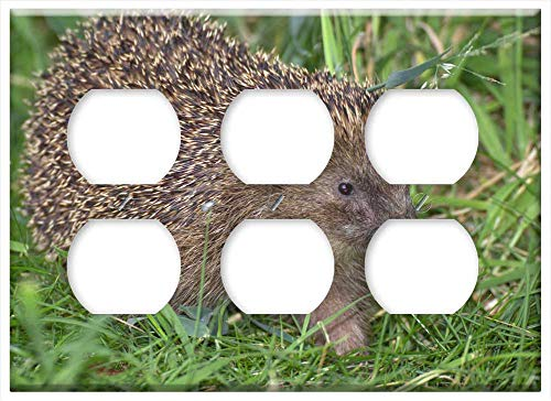 Triple Duplex Outlet Wall Plate Cover - Hedgehog Hannah Crepuscular Animals Spur Animal