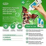 Clorhexyderm Shampoo - 2