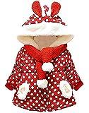 RJXDLT Baby Girl's Toddler Kids Fall Winter Coat Jacket Outwear Ear Hoodie Sweatshirt 6-12 Months 6230