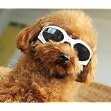 【おしゃれ】 小型犬 サングラス ゴーグル トイプードル チワワ ヨークシャテリア ミニチュアダックス他 (ホワイト, S)