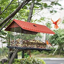 Bird feeder with red roof and seeds