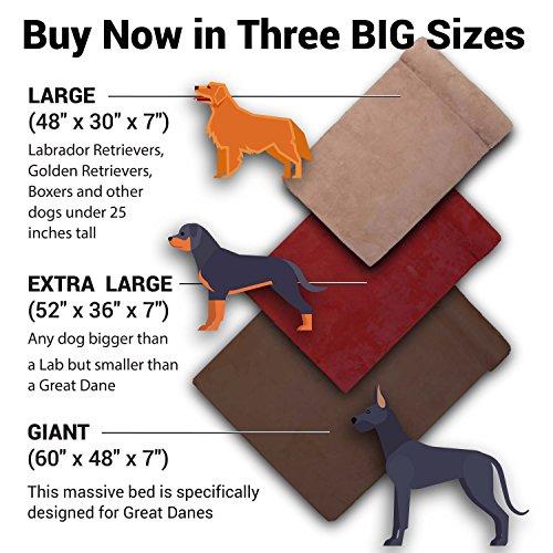 Big barker dog bed size and color breakdown