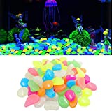 ZGXL 100 Pcs Glow in The Dark Colorful Pebble Stones Starfish for Fish Tank Aquarium Garden Plant Path Lawn Yard Walkway Driveway (Stones)