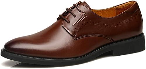GBRALX Chaussures pour Hommes à Bout Pointu pour Hommes d'affaires Formelles Chaussures à Lacets Chaussures de mariée Oxford Robe de soirée pour Le Bureau, Chaussures de Grande Taille