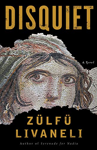 Image of Disquiet: A Novel