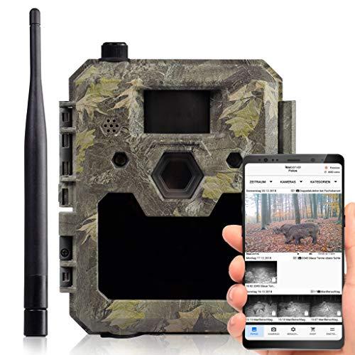 icuserver Wildtierkamera icucam 4G / LTE - 1 Jahr gratis Bildversand - 4000 Coins zu jeder neuen 4G-Kamera - Wildkamera mit Bewegungsmelder Nachtsicht Handyübertragung - Full-HD Video 40m Reichweite